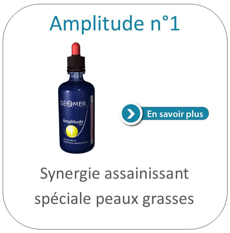 amplitude 1 géomer
