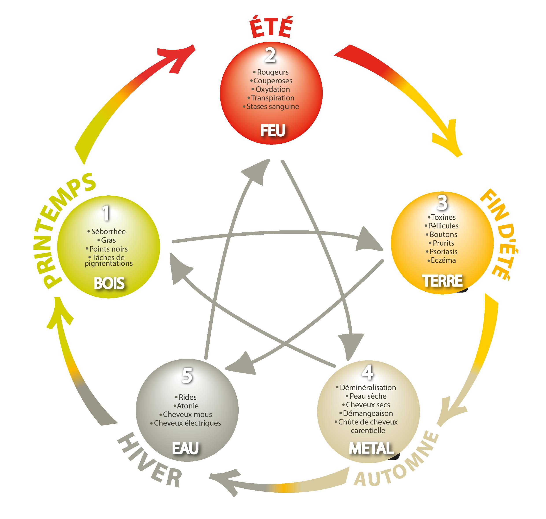 loi des 5 éléments
