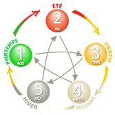 la loi des 5 éléments
