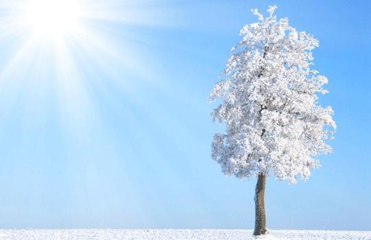hiver Geomer