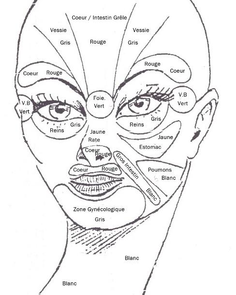 Soin énergétique viage 5 argiles terrals géomer. Chaque partie de notre visage est reliée directement à un organe bien précis de notre corps. Découvrez comment rééquilibrer les méridiens du visage grâce notre soin énergétique aux 5 argiles. Les Terrals Géomer vont effectuer un drainage lymphatique profond des tissus et vont permettre à la peau de s'oxygéner et de bien assimiler les produits régénérant.